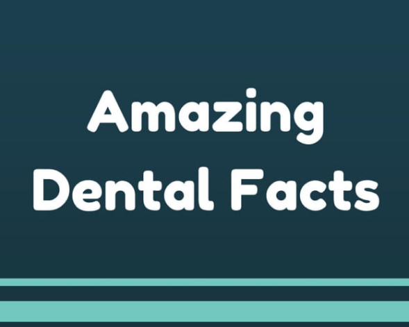 Amazing dental facts - idaho falls dentist